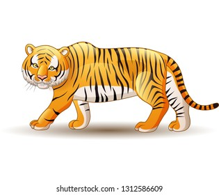 Illustration of tiger isolated on white background