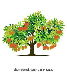 illustration of tree and mango, vector