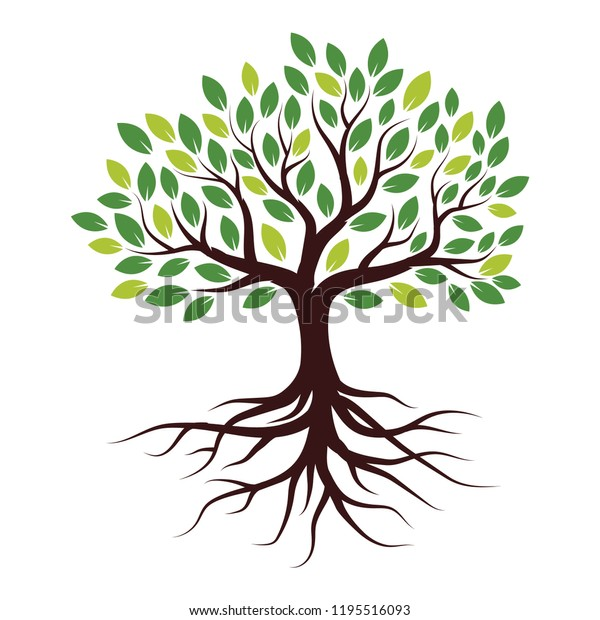 Illustration Tree with Roots