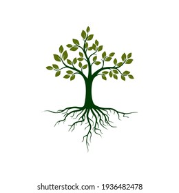 Illustration Tree with Roots on white background