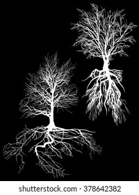 illustration with tree silhouettes isolated on black background