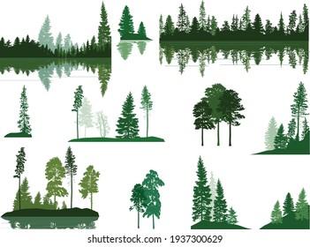 illustration with trees  groups set isolated on white background