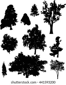 illustration with trees silhouette isolated on white background