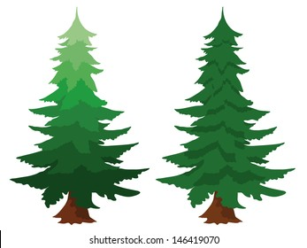 Illustration of two evergreen fir trees, one with a gradient colour, isolated on white conceptual of forests, forestry, timber, nature and natural sustainable resources