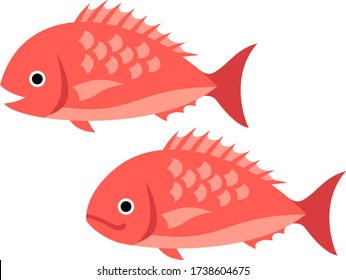 Illustration of two red snapper