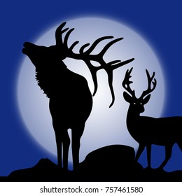 Illustration, two silhouette of deer (northern) in winter at moonlight, vector
