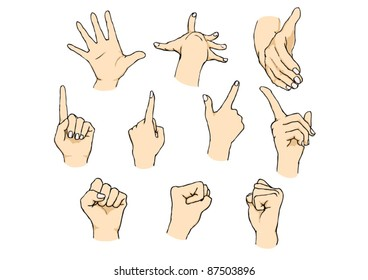 illustration of variously posed hands
