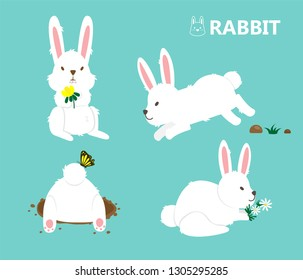 Illustration vector cute flat cartoon of isolated white bunny rabbits with flower and grass.