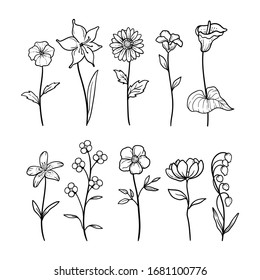 illustration vector graphic of floral nature 3