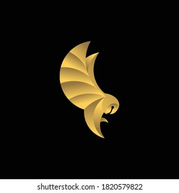 Illustration vector graphic template of flying owl logo