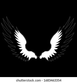 Illustration vector graphic of wings on black background.
