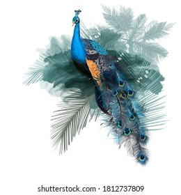 Illustration with vector realistic peacock bird on palm jungle background