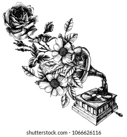 Illustration of a vintage gramophone with roses. Hand drawn vector retro phonograph for your nostalgic and symbolic design style.
