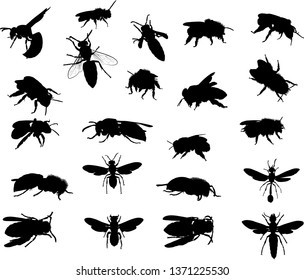 illustration with wasp and bee silhouettes collection isolated on white background