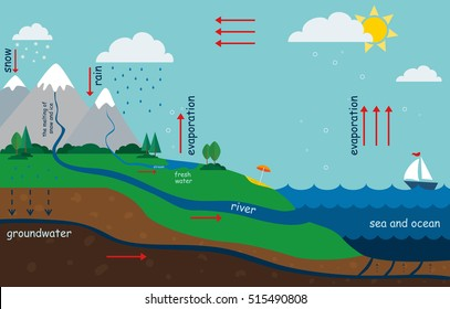 illustration of the water cycle in nature