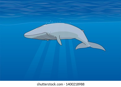 Illustration of whales under the cean.