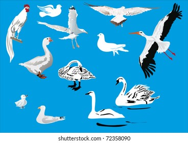 Duck Saxony Cartoon Seamless Wallpaper Stock Vector (Royalty