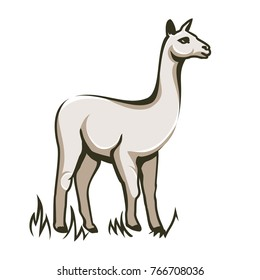 Illustration of Wild Lama