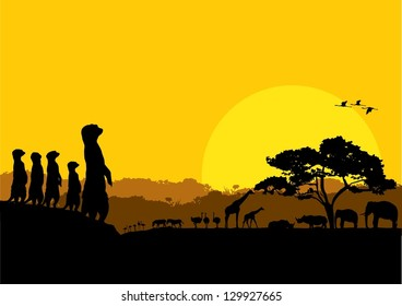 Illustration of wildlife animals silhouette at sunset, vector