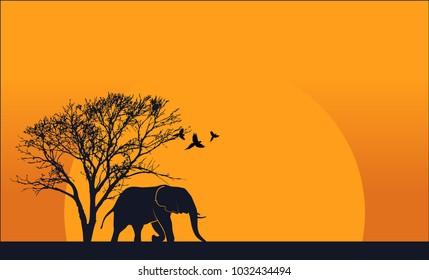 Illustration of wildlife background Elephants and birds