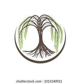 Illustration of Willow Tree Round Logo Design