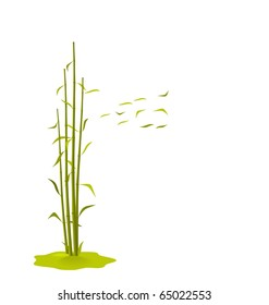 The illustration a wind breaks bamboo leaves, isolated on a white background - vector