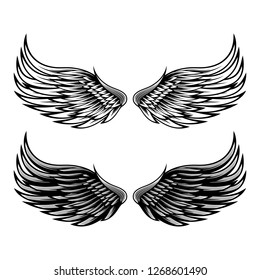Illustration of Wings vector design