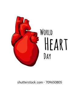 Illustration for World Heart Day. Vector real heart isolated on a white backgrounds.