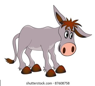 illustration young charming ass on white background