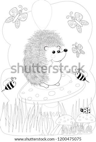 Illustration Zentangl Doodle Hedgehog Coloring Page Stock