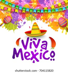 Illustration,poster or banner of viva mexico,Mexican holiday Background.