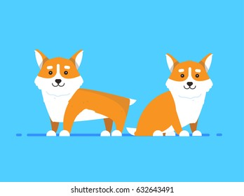 Illustrations of cartoon dogs breed Corgi on blue background in flat style