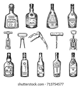 Illustrations of corkscrew and different wine bottles. Alcohol tequila and rum, absinthe and baileys, cognac and whisky vector