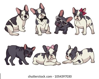 Illustrations set of cute little French bulldog. Funny pictures of puppy. Vector french bulldog funny, puppy cute collection