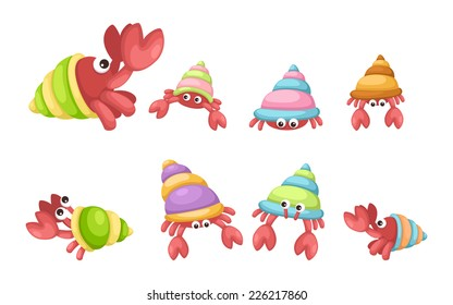 Illustrator of  isolated hermit crab vector