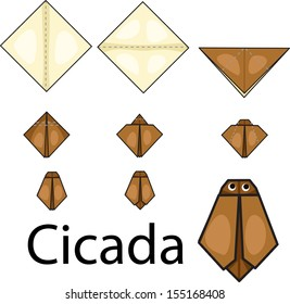 Illustrator of origami with cicada