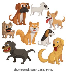 Ilustration of eight species of dogs, including pug, corgi, golden retriever, shiba inu, beagle, bull terrier, boxer and rottweiler