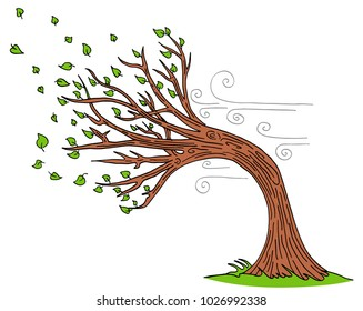 An image of a Blowing Wind Windy Day Tree cartoon.