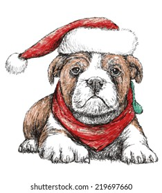 Image of bulldog with red hat, hand draw vector. Use for Christmas day.