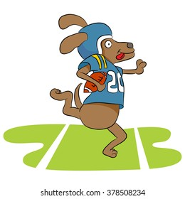 An image of a dog football player.