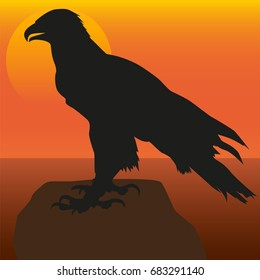 Image of the eagle on the background of the sunset. Silhouette of the eagle.
