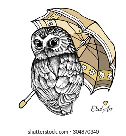 Image owl under an umbrella. Vector illustration.