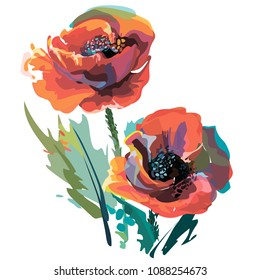 The image of poppies in color. Vector