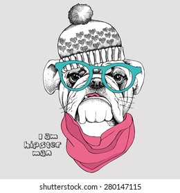 Image Portrait bulldog in knitted hat, pink cravat and green glasses. Vector illustration.