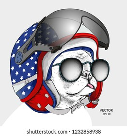 Image Portrait dog in motorcycle helmet. Vector illustration.