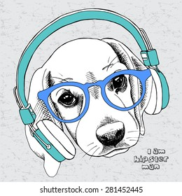 Image Puppy beagle portrait with blue headphones and glasses on a gray background. Vector illustration.