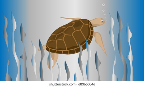 Image of rare sea turtles vectors
