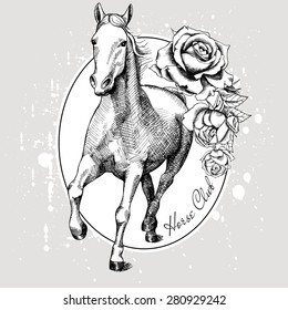 Image of a running white horse in a frame with roses on gray background. Vector illustration.
