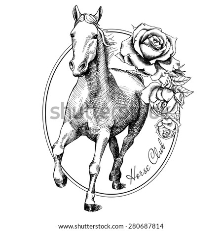 Image Running White Horse Frame Roses Stock Vector Royalty Free