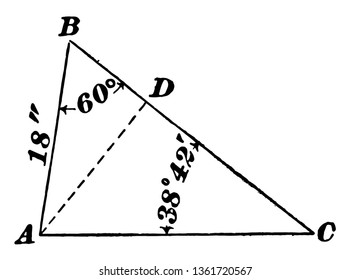 The image shows the oblique triangle along with the sides, angles and median shown by dotted lines and all have measurements, vintage line drawing or engraving illustration.